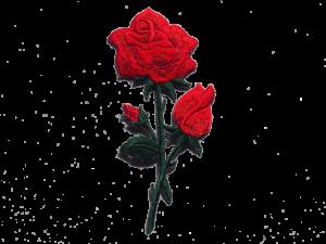 naszywki róża